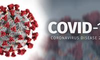 世卫组织:新型冠状病毒起源自动物的可能性较高
