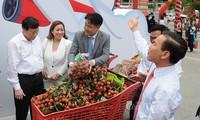 促进越中农业与食品企业对接