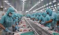 为查鱼及其制品的可持续发展开拓国内市场