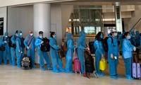 将在日越南公民接回国