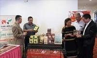 发展高品质越南咖啡产品