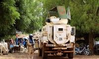 越南强调保护平民   以全面综合方式解决马里问题