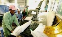 按照《越英自贸协定》出口英国的越南首批60吨大米正式上市