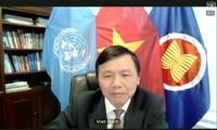 越南呼吁联合国安理会和国际社会制止以巴暴力冲突和恢复中东和平进程