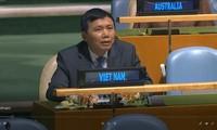 越南承诺促进发挥联合国宪章和国际法的作用