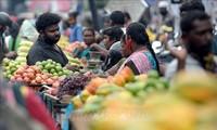 IMF警告发达经济体与发展中经济体的经济增长差距不断扩大