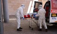 美国日新增新冠死亡病例增多