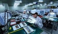 越南国内生产总值预计增长3.5%到5.5%