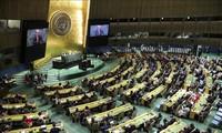 阿富汗驻联合国代表团退出联大会议发言