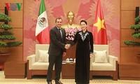 Promouvoir les relations économiques et commerciales Vietnam-Mexique