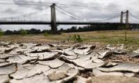 Les températures mondiales risquent d'augmenter de 3 à 5°C d'ici à la fin du siècle