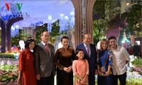 Hô Chi Minh-ville: La rue aux fleurs Nguyên Huê ouvre ses portes