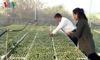 Quand même l'agriculture devient «intelligente» !...