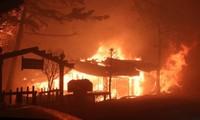 Incendies dans le Gangwon: l'état de «catastrophe nationale» décrété en République de Corée