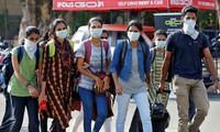 L'ambassade du Vietnam en Inde soutient le rapatriement des ressortissants vietnamiens