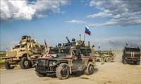 Syrie: 11 membres des forces du régime tués par l'EI dans le désert
