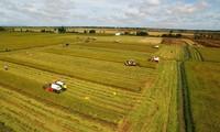 Le Vietnam ambitionne de figurer parmi les 15 premières puissances agricoles du monde