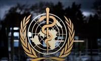Les membres de l'OMS d'accord pour renforcer l'institution