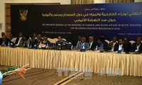 Egypt, Sudan concerned over modifications to Ethiopia's Dam