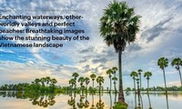 Vietnamese landscape described 'breathtaking' on UK's Daily Mail