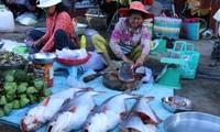 Cambodia to resume farmed fish imports from Vietnam