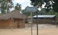 No Vietnamese citizen harmed in violence in Mozambique