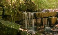 Travel website reveals top 10 best Vietnamese national parks