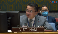 Vietnam calls for negotiations in Libya