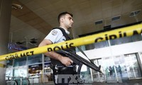 Death toll in Istanbul airport attack increases to 43