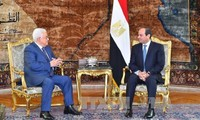 Egypt, Palestine seek to restore Middle East peace process