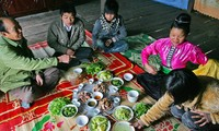 Wild vegetable specialties in the northwest region