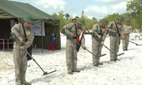 Vietnam, South Korea cooperate in mine action