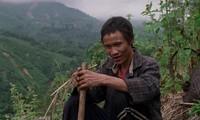 Vietnamese films honored at film festival in Ba Ria-Vung Tau