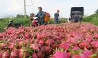 Vietnam's agricultural, aquatic products target India