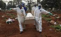 COVID-19 fatalities exceed 347,000 worldwide