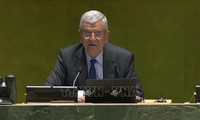 UN General Assembly president calls for Security Council reform