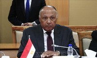 Palestine remains central cause in Arab world