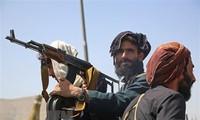 Taliban must not host terrorists again: NATO warns