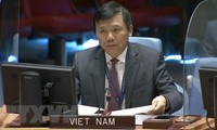 Vietnam welcomes Central African Government's unilateral ceasefire
