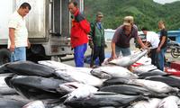 Mitglieder der Fischereikommission verstärken Kooperation