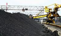 Der vietnamesische Bergbaukonzern setzt Aufgabe für 2013