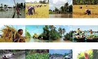Zusammenarbeit der Provinzen durch Wirtschaftsforum für Mekong-Delta