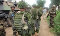 EU verstärkt die finanzielle und politische Unterstützung für Zentralafrikanische Republik