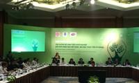 Bildung eines kreativen unternehmerischen Ökosystems in Vietnam