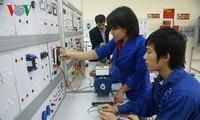 Forschung über die Politik zur Entwicklung hochqualifizierter Arbeitskräfte in Vietnam