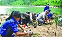 Vietnam und die interntanationale Gemeinschaft bekämpfen den Klimawandel 2016