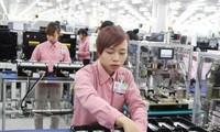 Französische Presse: Vietnam hat die effizienteste Wirtschaft in der Region