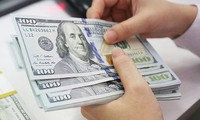 Vietnam investiert mehr als 432 Millionen US-Dollar ins Ausland
