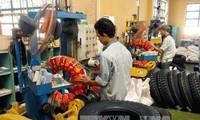 Zahlreiche Länder wollen Arbeitskräfte aus Vietnam aufnehmen