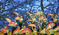 Das Bauhinien-Fest in der Bergstadt Dien Bien Phu